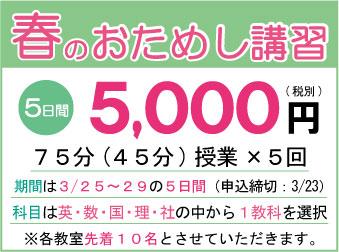 春のおためし講習5日間5000円